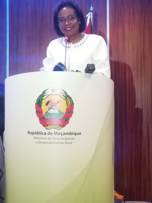 """Mozambique's Vice-Minister of the Ministry of Land, Environment, and Rural Development, Celmira Silva, explained that, """"this was a participatory process that began with consultations at the local level to listen to priorities and actions for 2020 to 2025 that will contribute to creating climate resilience and adaptation, while also promoting low carbon sustainable development. Additionally, national sectoral consultations were held with the aim of consolidating government priorities."""""""