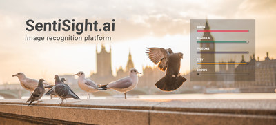 The SentiSight.ai web platform for AI-based image recognition applications lets users develop their own customized, deep learning models for image classification without having to write any code.