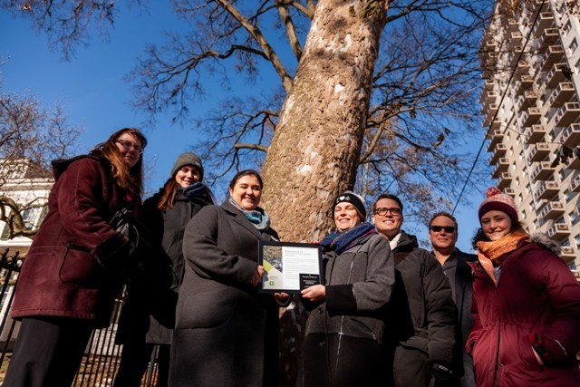 Earlier today, representatives from Forests Ontario, Eldon House Museum, City of London and ReForest London gathered to honour this 150-year-old Sycamore as a Forests Ontario Heritage Tree. (CNW Group/Forests Ontario)