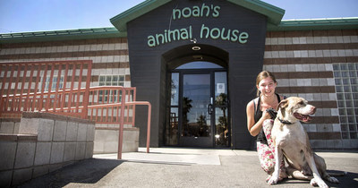 Noah's Animal House, located in Las Vegas, provides an option for domestic violence victims fleeing from a dangerous situation with their pets.