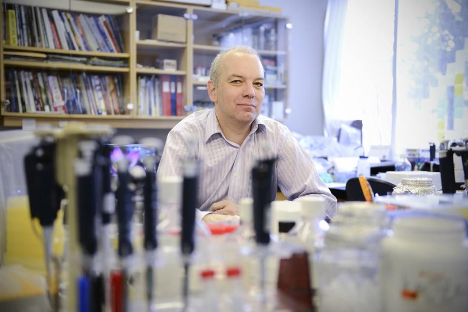Daniel Sinnett Appointed Director of Research at CIUSSS du Nord-de-l'Île-de-Montréal (CNW Group/Centre intégré universitaire de santé et de service sociaux du Nord-de-l'Île-de-Montréal (CIUSSS NIM))