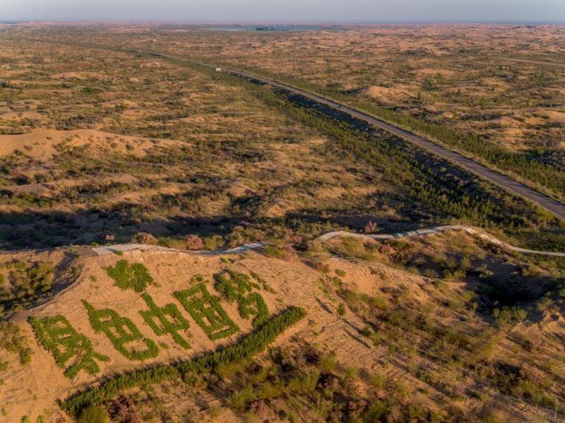 The Greening of Kubuqi Desert