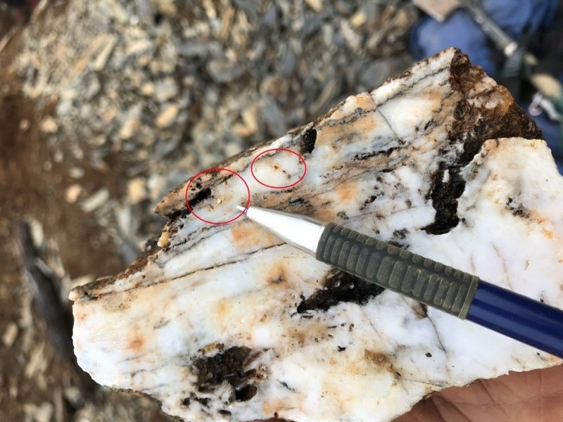 """The ''layered'' aspect of the veins appears to be a """"crack and fill'' setup with local open space zones in the central part of the vein. Visible gold has been frequently observed along a specific pulse (CNW Group/X-Terra Resources Inc.)"""