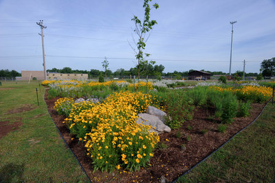 Pollinator garden at DTE's Mt. Pleasant Service Center.