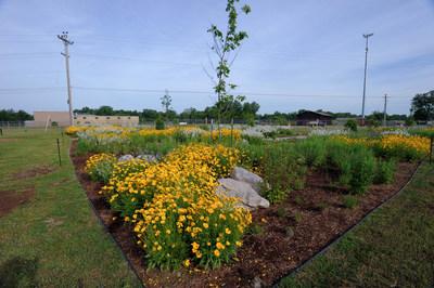 Pollinator garden at DTE's Mt. Pleasant Service Center.