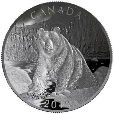 La pièce biconcave en argent fin de la Monnaie royale canadienne – Nature indomptée : Ours brun (Groupe CNW/Monnaie royale canadienne)