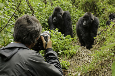 Accompanied by a naturalist guide, Private Jet guests will observe a family of mountain gorillas in Rwanda's Virunga Mountains.