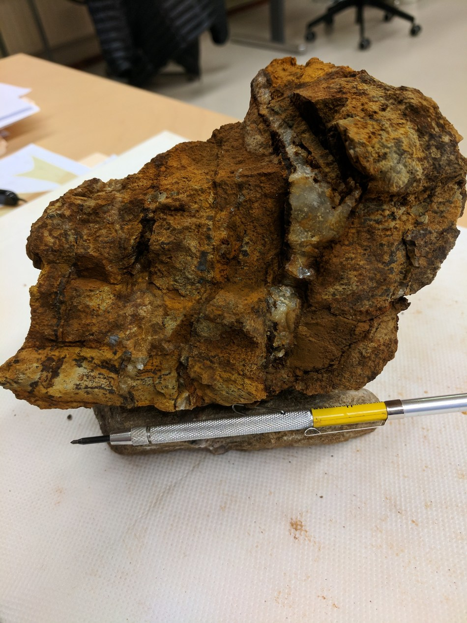 Stockwork Veining and Alteration of Conglomerate (CNW Group/Aurion Resources Ltd.)