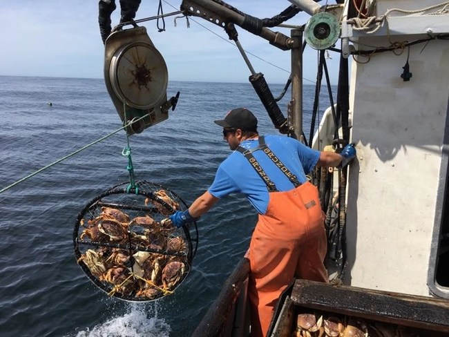 Morro Bay crabbing families keep Dungeness on the table and in the market all season long