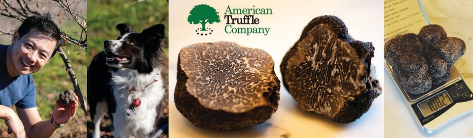 (PRNewsfoto/American Truffle Company)