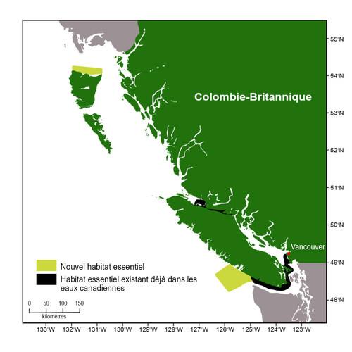 Carte montrant la côte canadienne du Pacifique et indiquant les actuelles et nouvelles zones d'habitat essentiel, désignées pour protéger les épaulards résidents du Sud et les épaulards résidents du Nord.   La nouvelle zone d'habitat essentiel est en jaune. Ces zones incluent l'entrée ouest de Dixon allant jusqu'au point le plus au nord de Haida Gwaii et le sud-ouest de l'île de Vancouver.  La zone actuelle d'habitat essentiel est en noir. Ces zones incluent le détroit de Johnstone et le sud-est (Groupe CNW/Pêches et Océans Canada)