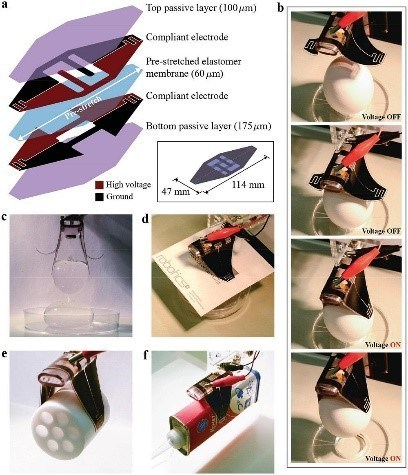 Structure of the electro-adhesion-enabled soft gripper, and demonstration of gripping different objects (PRNewsfoto/University of Electro-Comm)