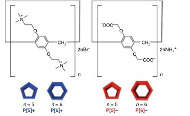 Structures of pillar[n]arenes, n = 5 and 6. Left, blue: cationic (positively charged) variants; right, red: anionic (negatively charged) variants (PRNewsfoto/Kanazawa University)
