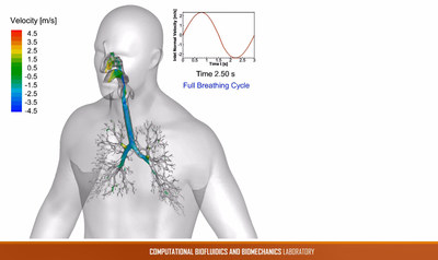 With ANSYS, Oklahoma State University researchers developed a unique CFD-based elastic lung model that accurately simulated the human respiratory system.