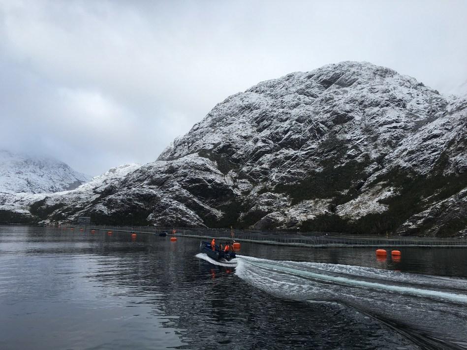 Sixty South in the pure Antarctic waters of Porvenir, Tierra del Fuego.