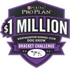 """Nick Lachey Throws His """"Leash"""" In The Ring For The 2019 Purina Pro Plan $1 Million Westminster Kennel Club Bracket Challenge"""