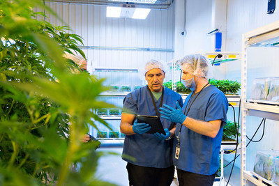 Derek Pedro and Curtis Wallace of WeedMD log the genetics of the Company's cannabis strains into the Blockstrain database on October 17. These were the first strains officially logged into the Blockstrain system. (CNW Group/BLOCKStrain Technology Corp.)