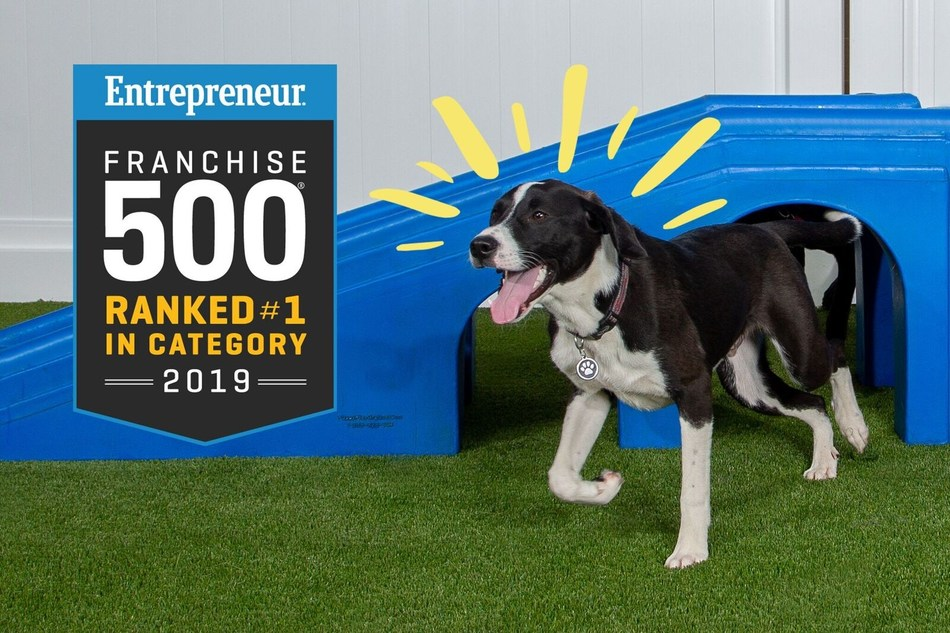 Camp Bow Wow Ranks #1 in the Pet Services Category in Entrepreneur's 40th Annual Franchise 500