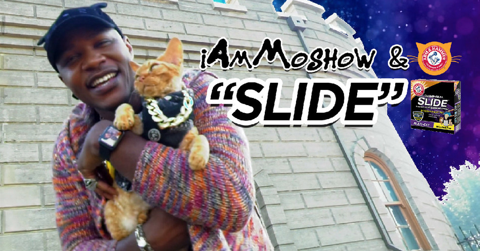 """The maker of ARM & HAMMER™ CLUMP & SEAL™ SLIDE™ Cat Litter donates $10,000 to cat welfare organization Mac's Fund after YouTube """"Slide"""" video starring cat rapper iAmMoshow surpasses goal of one million views."""