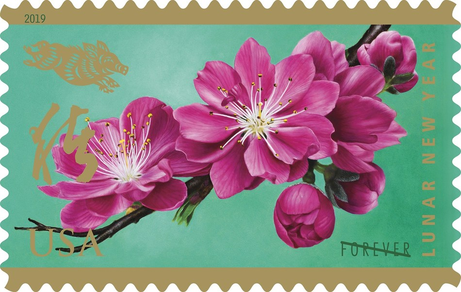Peach blossoms, like those depicted in the artwork of the Year of the Boar Forever stamp, mark the beginning of spring in Chinese culture. In China, peach trees typically bloom in early February, just in time for the new year.