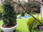 Artificial Grass Installation Enhances Dallas Home
