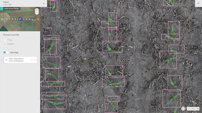 Taranis field emergence insight