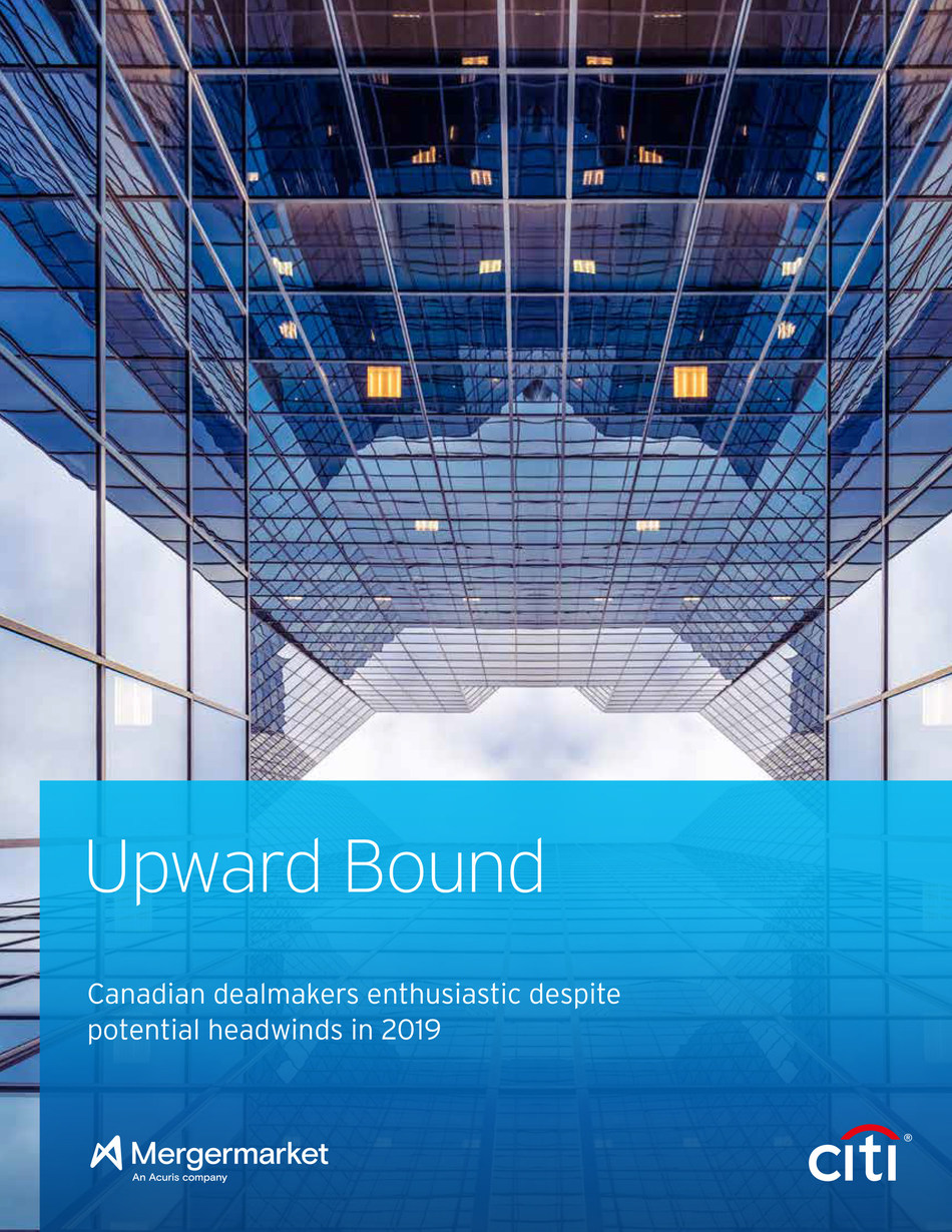 Upward Bound: Canadian dealmakers enthusiastic despite potential headwinds in 2019 (CNW Group/CITIBANK CANADA)