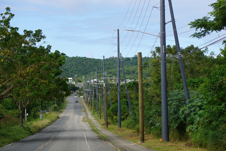 A line of RS FRP composite utility poles installed in the U.S. Virgin Islands as part of a FEMA hazard mitigation project. These structures are designed to withstand 200mph (320km/h) wind speeds so as to increase system resiliency and harden the electrical grid from the damaging effects of future hurricanes. (CNW Group/RS Technologies Inc.)