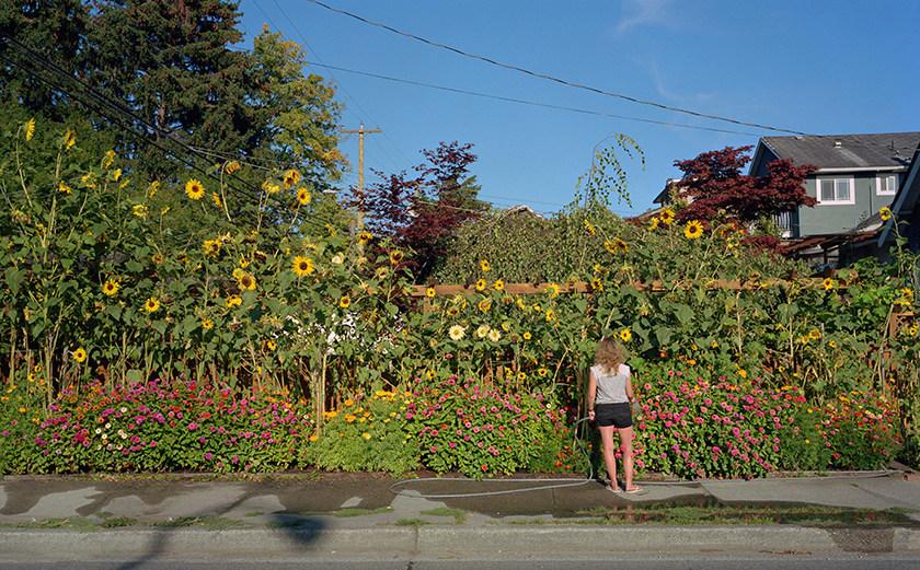 Sunflower, 2018 Archival Pigment Print 150 x 233.5 cm, par Stephen Waddell (CNW Group/Scotiabank)