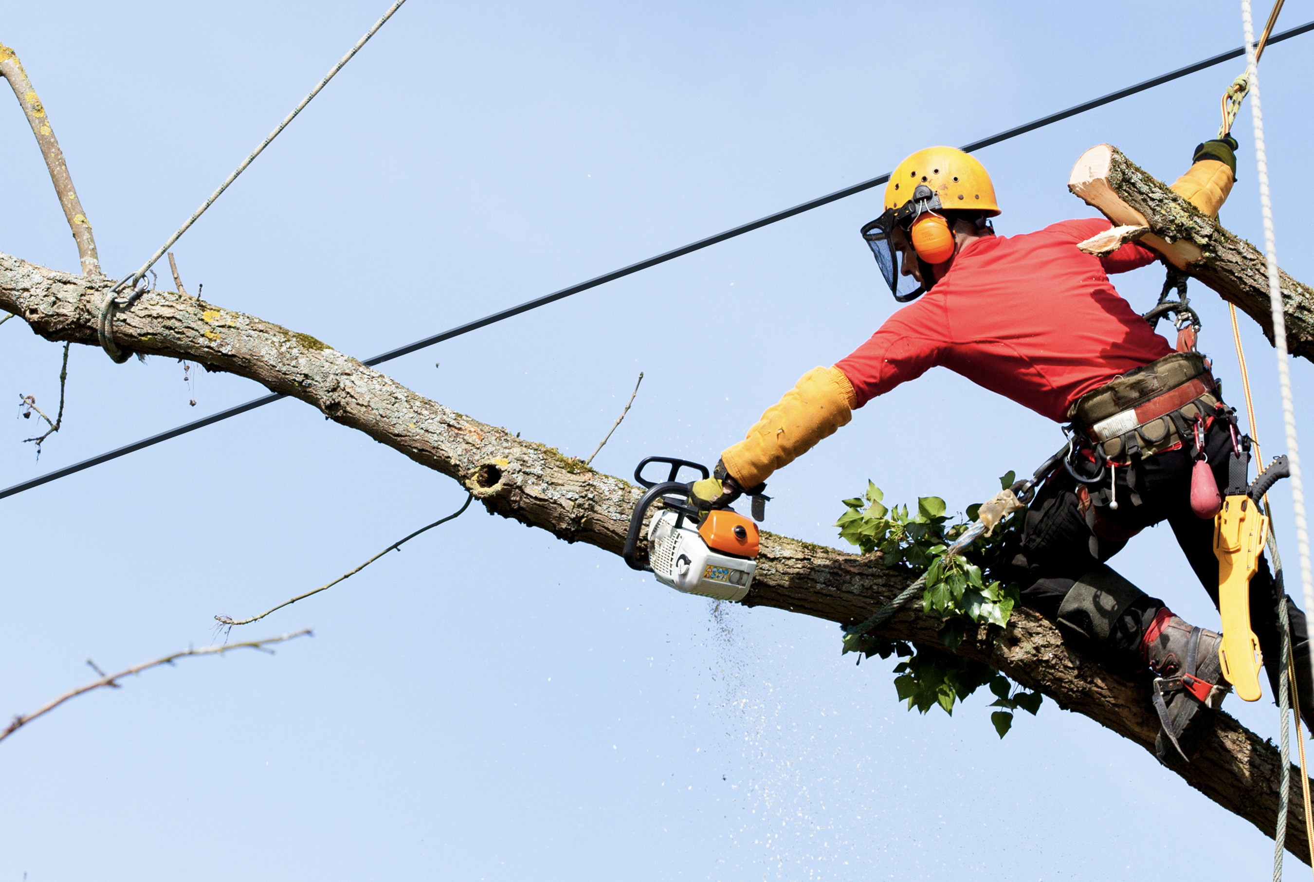 "Tree trimming can be a challenging, time-consuming and expensive effort for utility companies. IBM's new ""The Weather Company Vegetation Management - Predict"" solution can help the energy sector predict outage threats caused by trees and plants across service territories. Using IBM PAIRS Geoscope technology, which can be used across industries, the new solution makes massive amounts of data manageable for the E&U industry to help reduce outages and maintain trimming costs."