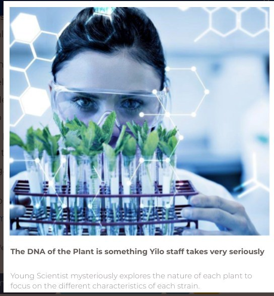 Young Scientist mysteriously explores the nature of each plant to focus on the different characteristics of each strain.