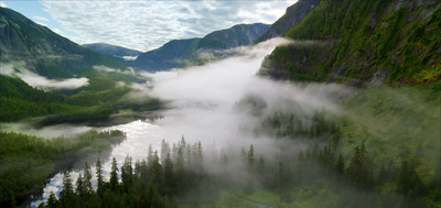 The Great Bear Rainforest is the last remaining intact temperate coastal rainforest in the world. The film Great Bear Rainforest opens at the Ontario Science Centre on February 15, 2019. (CNW Group/Ontario Science Centre)