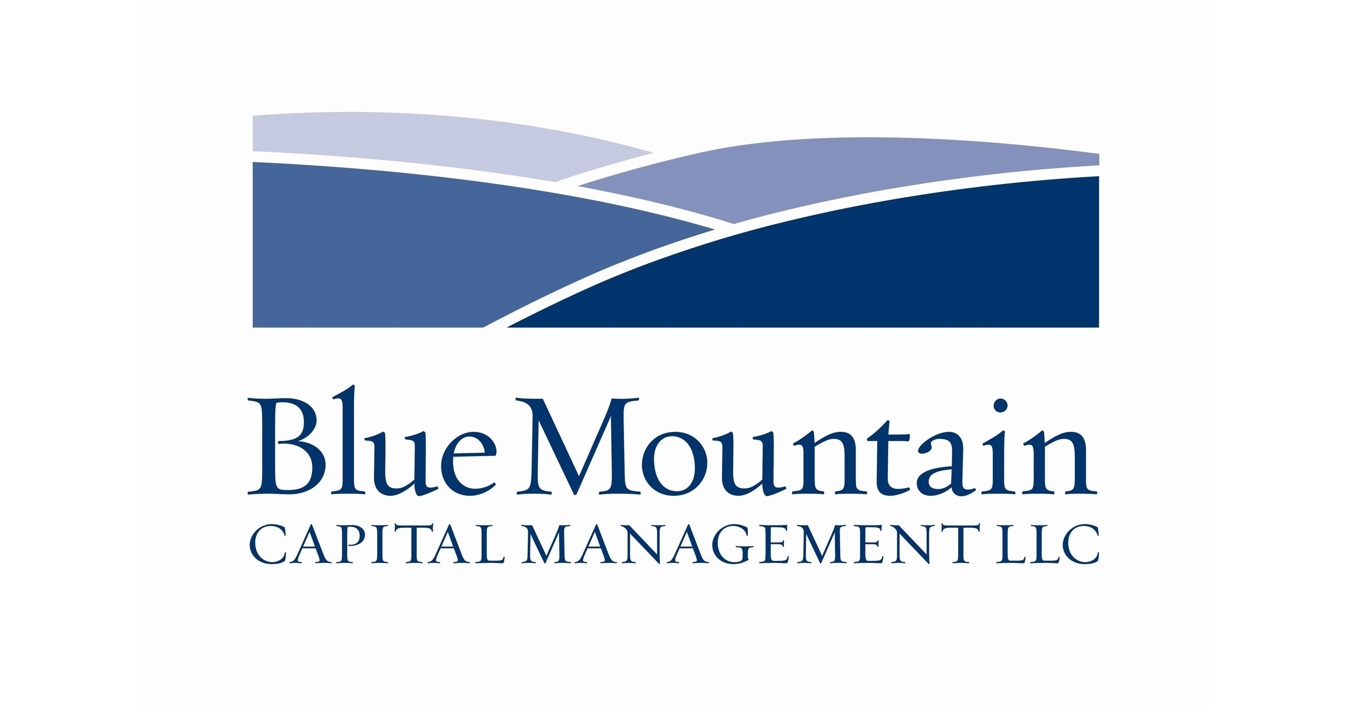 Siderow blue mountain capital investments all investments inc