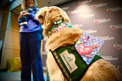 Child Life facility dog Leica and her handler Amy get ready to deliver valentines to patients at Cincinnati Children's