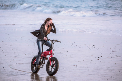 SDREAM - The Smartest, Foldable, All Terrain e-bike on Indiegogo (PRNewsfoto/SDREAM.bike)