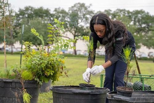 Enterprise Urban Tree Initiative