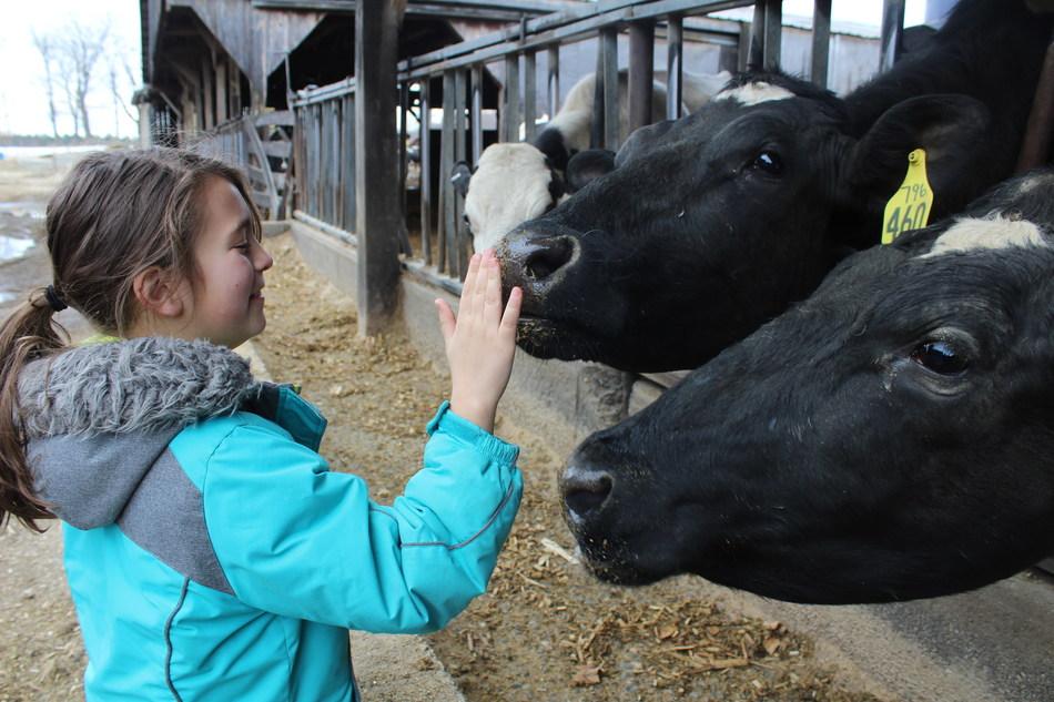 Student on farm tour in Massachusetts