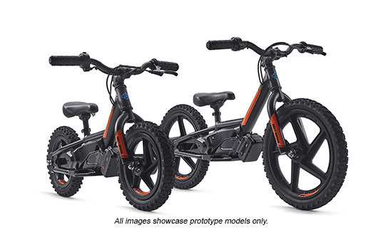 eBike Models - Prototypes shown.