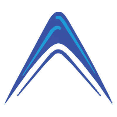 Absolute_Market_Insights_Logo