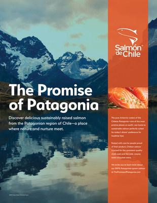 Infografía de Salmón de Chile