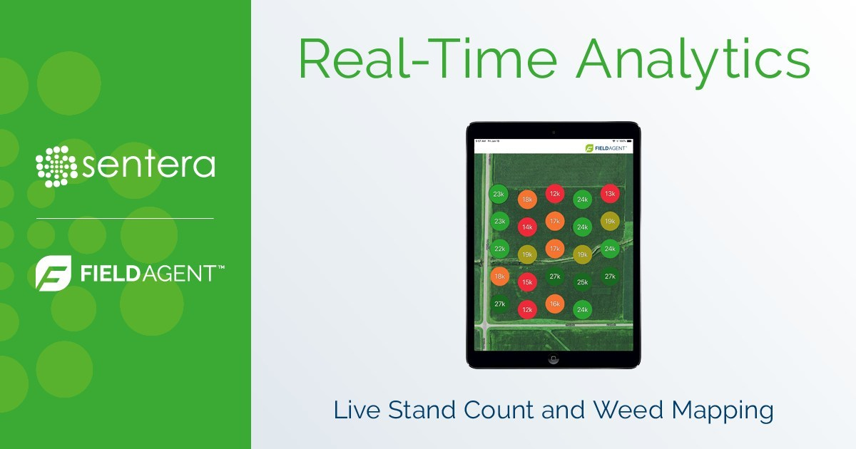Sentera Real-Time Analytics for FieldAgent allows sampling of 100x more data points than manual methods.