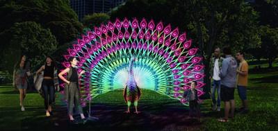Regal Peacock, Vivid Sydney 2019