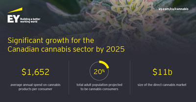 As the cannabis market continues to establish roots in Canada, what does the sector's future hold? EY analysis projects significant growth, along with some uncertainty, for licensed producers of both medical and recreational cannabis. (CNW Group/EY (Ernst & Young))