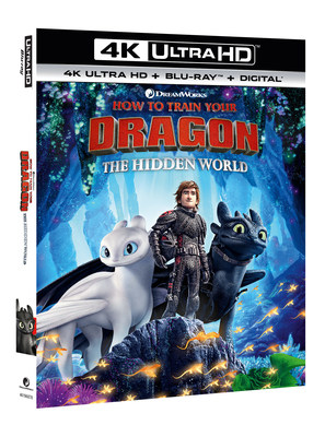 How to train your dragon 3 imdb release date