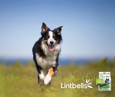 YuMove Soft Chews relieve dog joint stiffness and support mobility with visible results within the first 60-days of use.