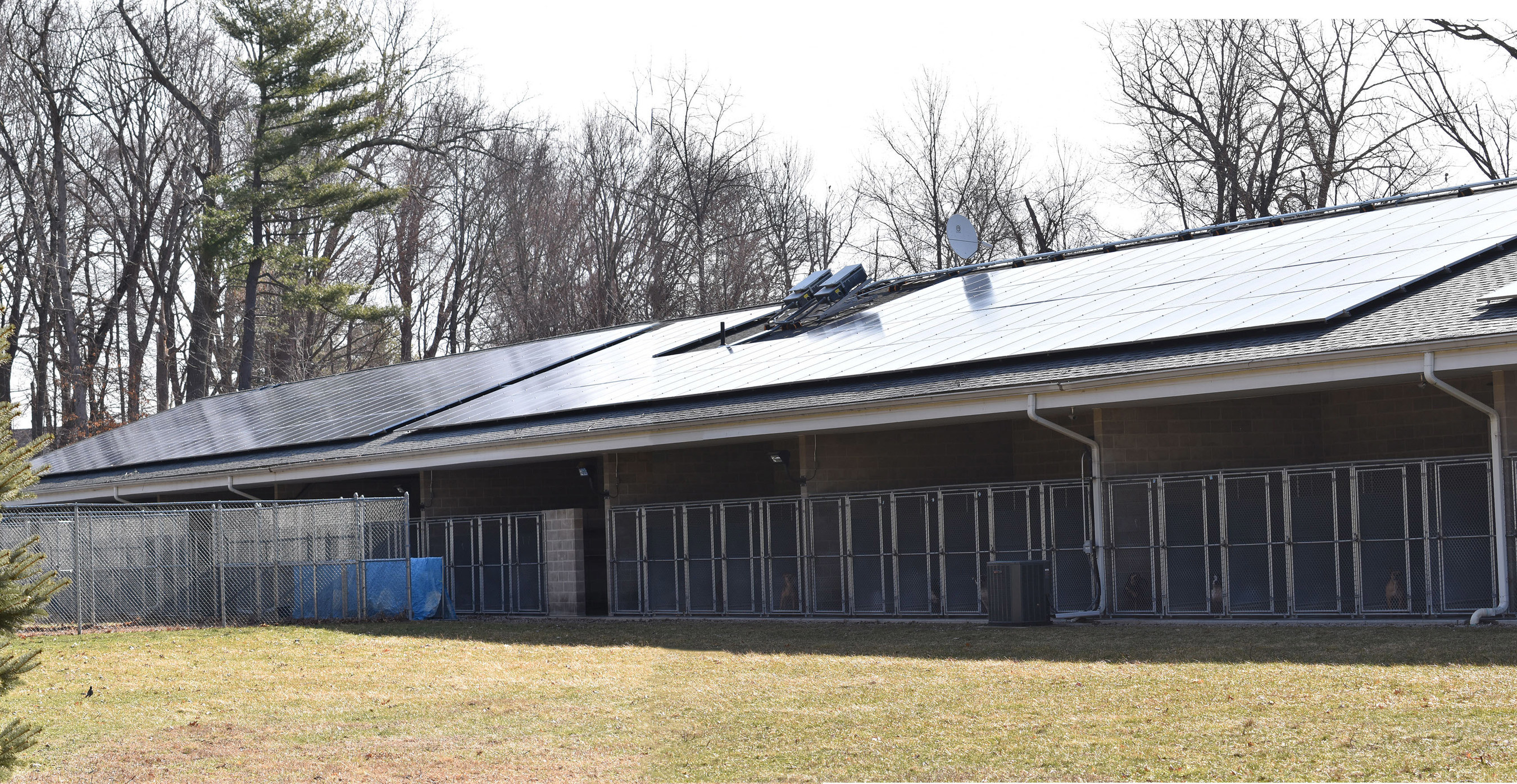 The newly installed rooftop array on top of the kennels
