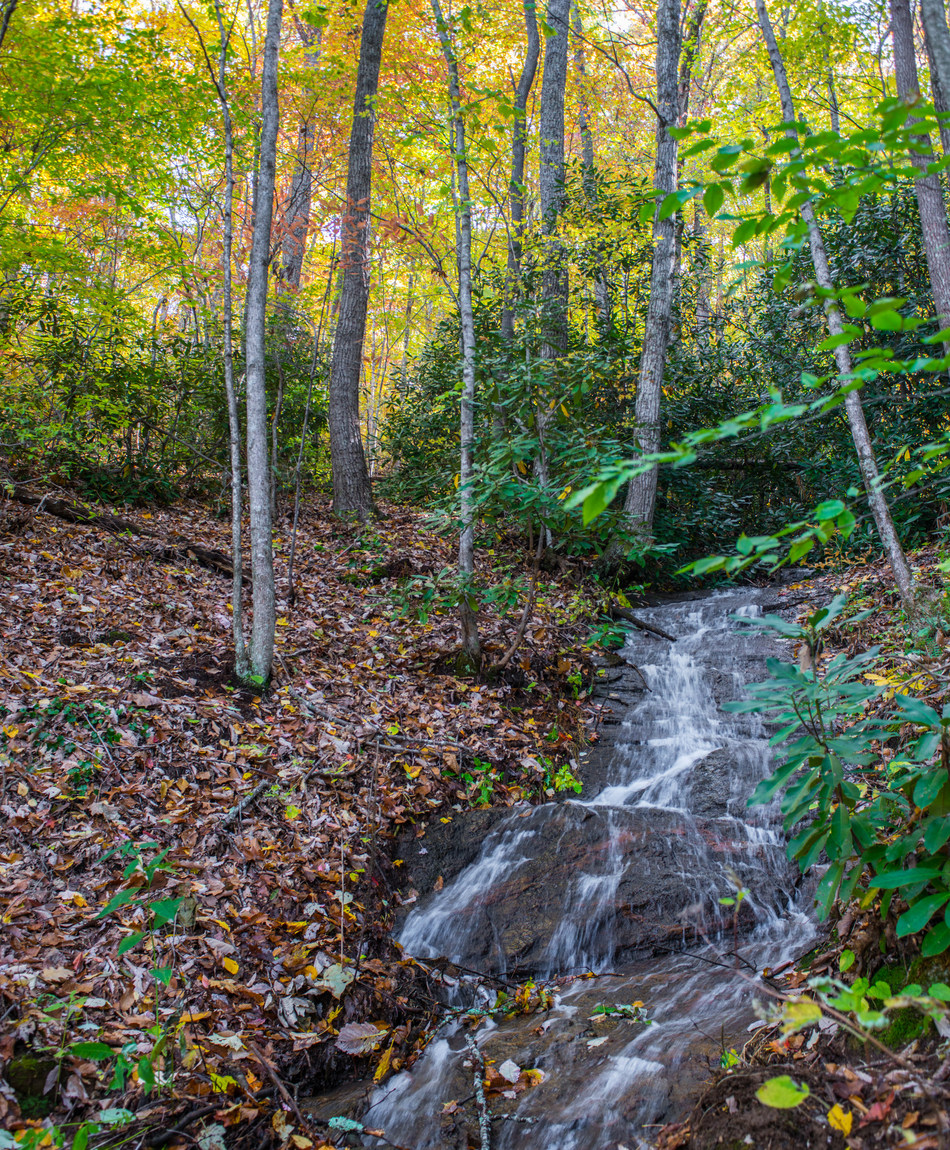 Miles of streams and waterfalls are protected within High Hickory conservation preserve.
