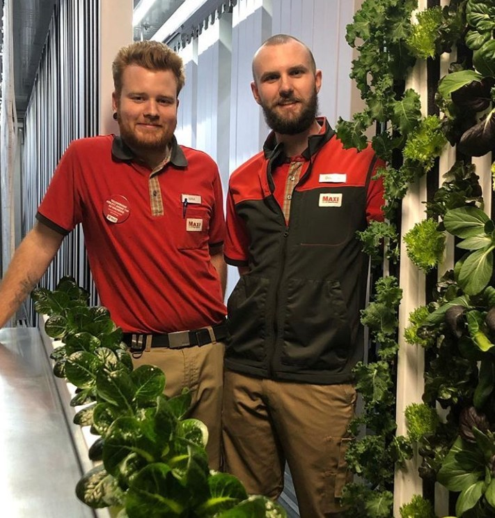 ICA Maxi Högskolan employees, Max Rydberg and Douglas Klang, now grow produce onsite for customers in Freight Farms' Leafy Green Machine.