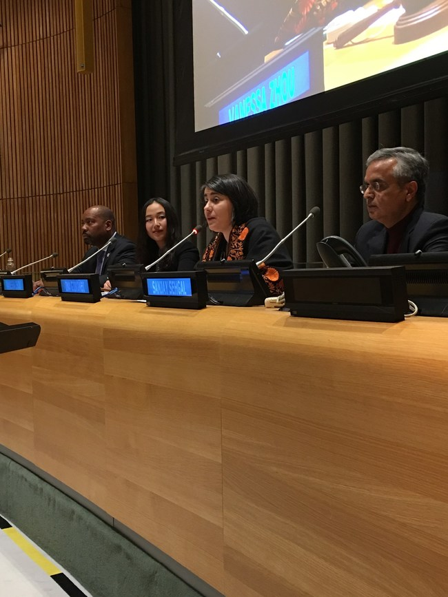 e-Co Leadership Coaching Program Founder & Director Ina Gjikondi announces the new program at the United Nations Impact Leadership 21 Summit- A call for a global consciousness shift in leadership