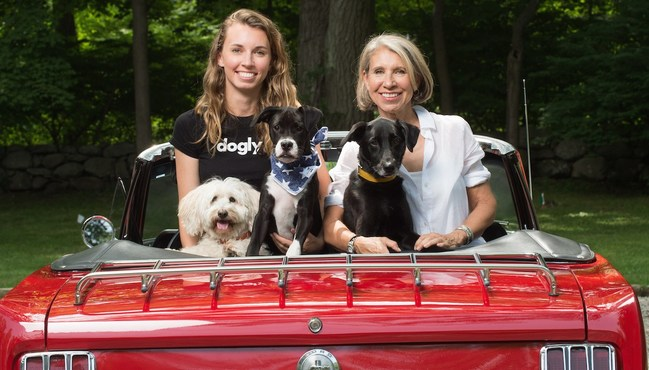 Dogly Founders Cory and Jane Turner with three (of 4) of their own rescue pups launch a new partnership with Boxed to bring their Dogly-approved, good-for-your-dog products to Boxed's millions of dog parents.